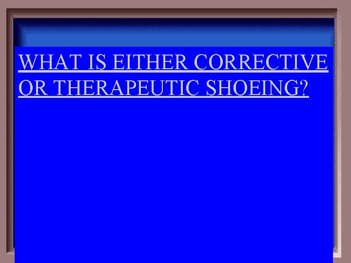WHAT IS EITHER CORRECTIVE OR THERAPEUTIC SHOEING?
