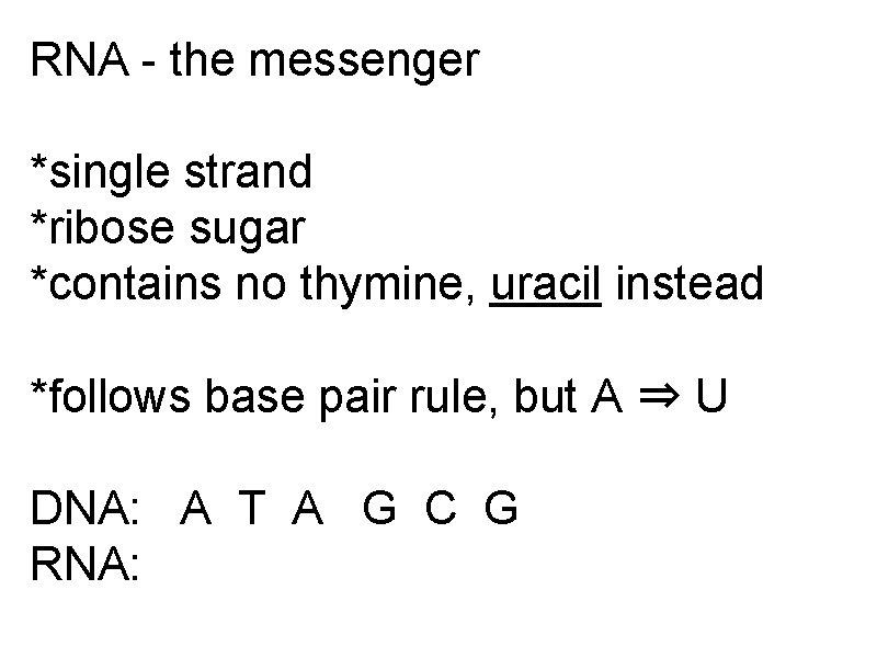 RNA - the messenger *single strand *ribose sugar *contains no thymine, uracil instead *follows