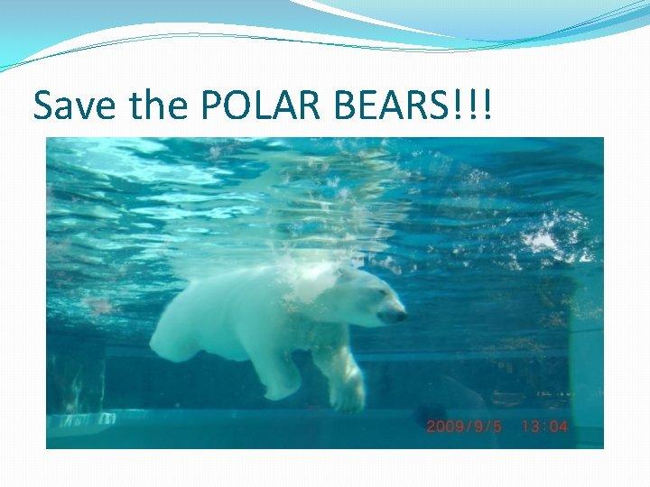 Save the POLAR BEARS!!!
