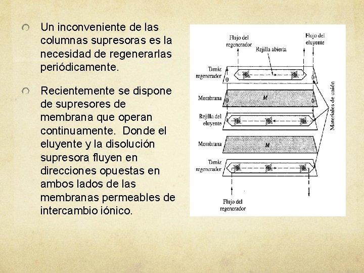 Un inconveniente de las columnas supresoras es la necesidad de regenerarlas periódicamente. Recientemente se