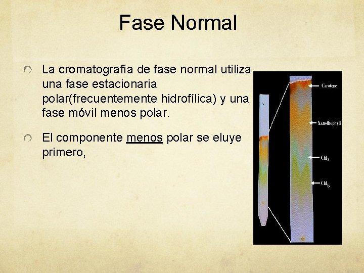 Fase Normal La cromatografía de fase normal utiliza una fase estacionaria polar(frecuentemente hidrofílica) y