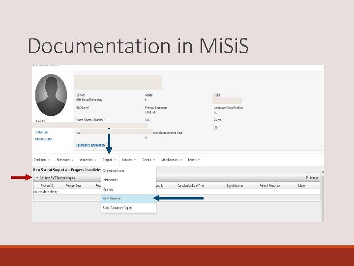 Documentation in Mi. S