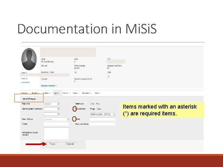 Documentation in Mi. S Items marked with an asterisk (*) are required items.