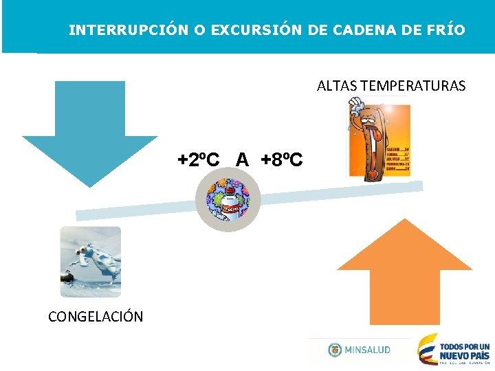INTERRUPCIÓN O EXCURSIÓN DE CADENA DE FRÍO ALTAS TEMPERATURAS +2ºC A +8ºC CONGELACIÓN