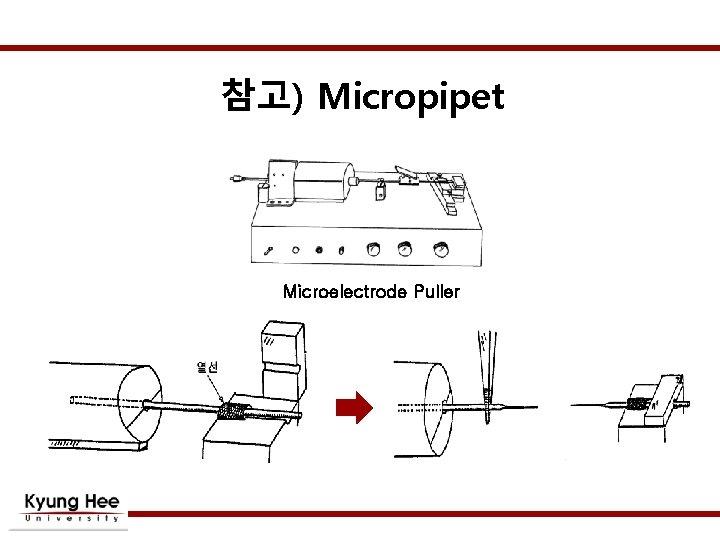 참고) Micropipet Microelectrode Puller