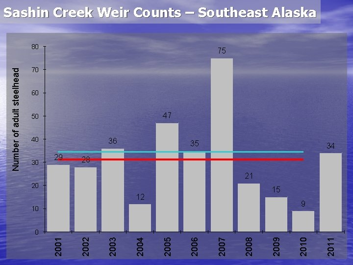 Sashin Creek Weir Counts – Southeast Alaska 75 70 60 47 50 40 30