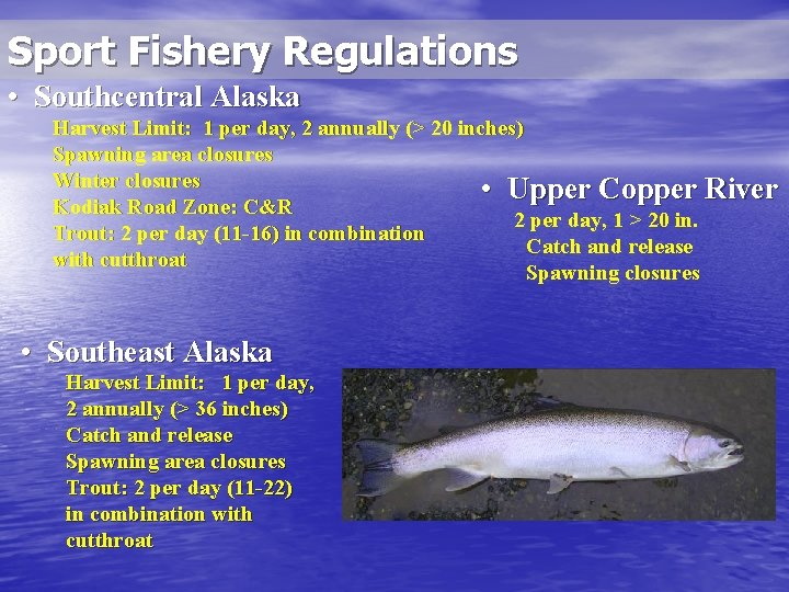 Sport Fishery Regulations • Southcentral Alaska Harvest Limit: 1 per day, 2 annually (>