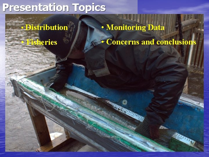 Presentation Topics • Distribution • Monitoring Data • Fisheries • Concerns and conclusions