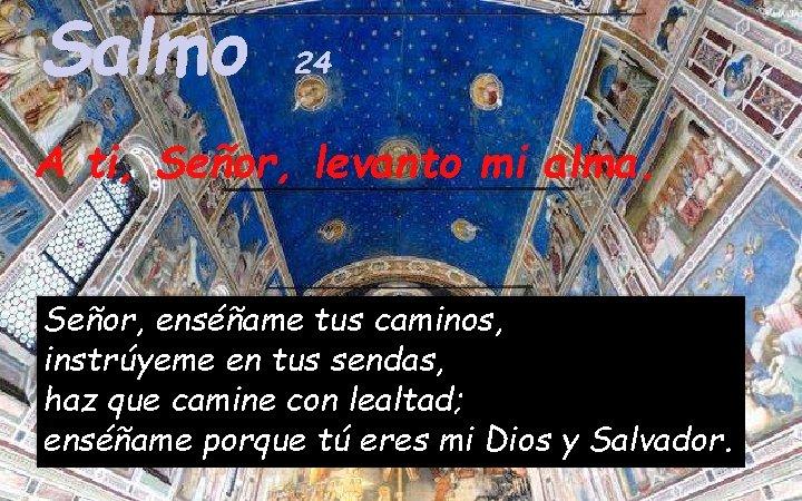 Salmo 24 A ti, Señor, levanto mi alma. Señor, enséñame tus caminos, instrúyeme en