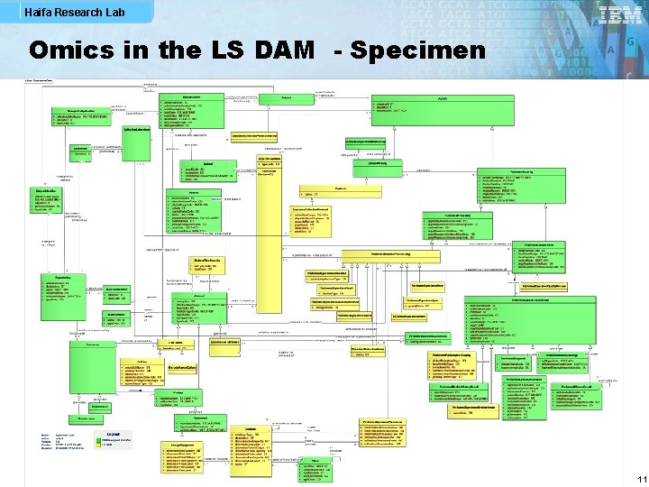 Haifa Research Lab Omics in the LS DAM - Specimen 11