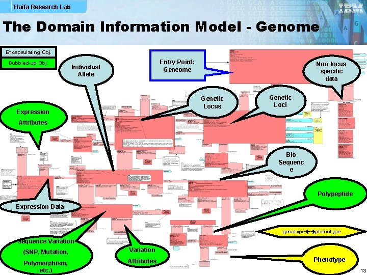 Haifa Research Lab The Domain Information Model - Genome Encapsulating Obj. Bubbled-up Obj. Entry