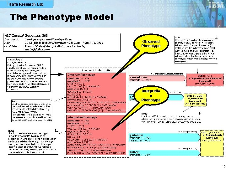 Haifa Research Lab The Phenotype Model Observed Phenotype Interpretiv e Phenotype 16