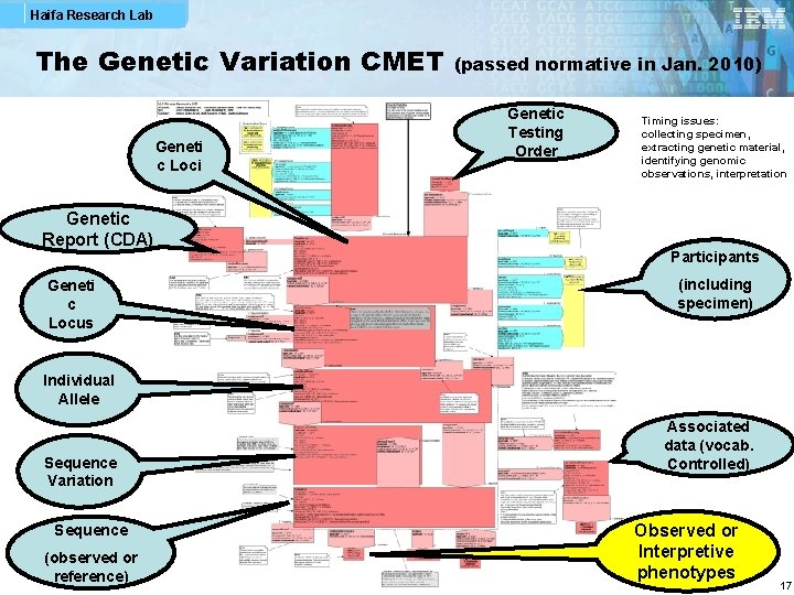 Haifa Research Lab The Genetic Variation CMET Geneti c Loci Genetic Report (CDA) Geneti