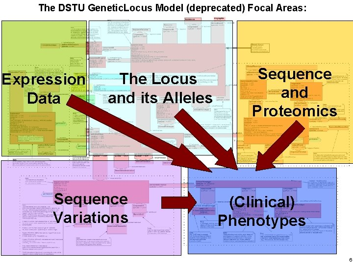 The DSTU Genetic. Locus Model (deprecated) Focal Areas: Haifa Research Lab Expression Data The