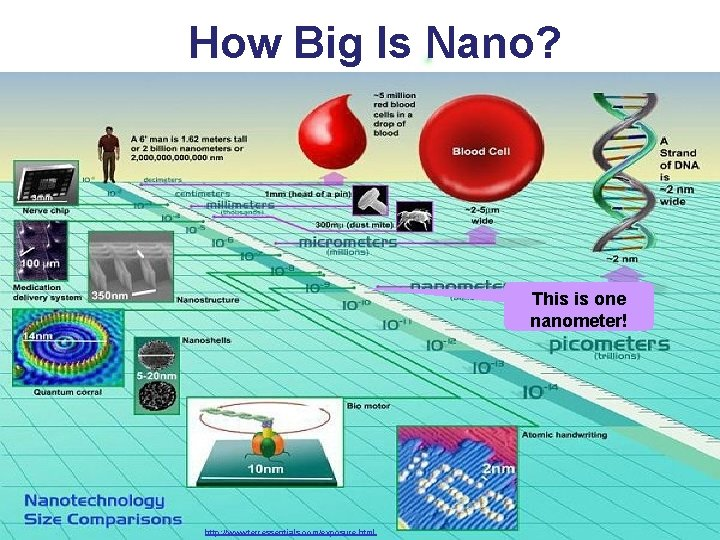 How Big Is Nano? This is one nanometer! http: //www. terressentials. com/exposure. html