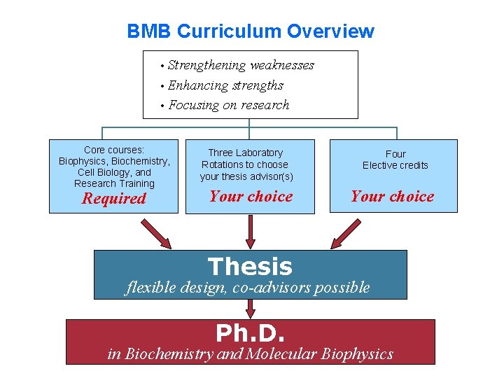 BMB Curriculum Overview • Strengthening weaknesses • Enhancing strengths • Focusing on research Core