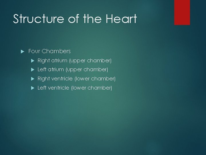Structure of the Heart Four Chambers Right atrium (upper chamber) Left atrium (upper chamber)