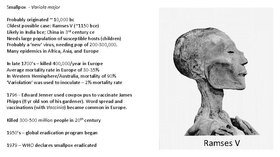 Smallpox - Variola major Probably originated ~ 10, 000 bc Oldest possible case: Ramses