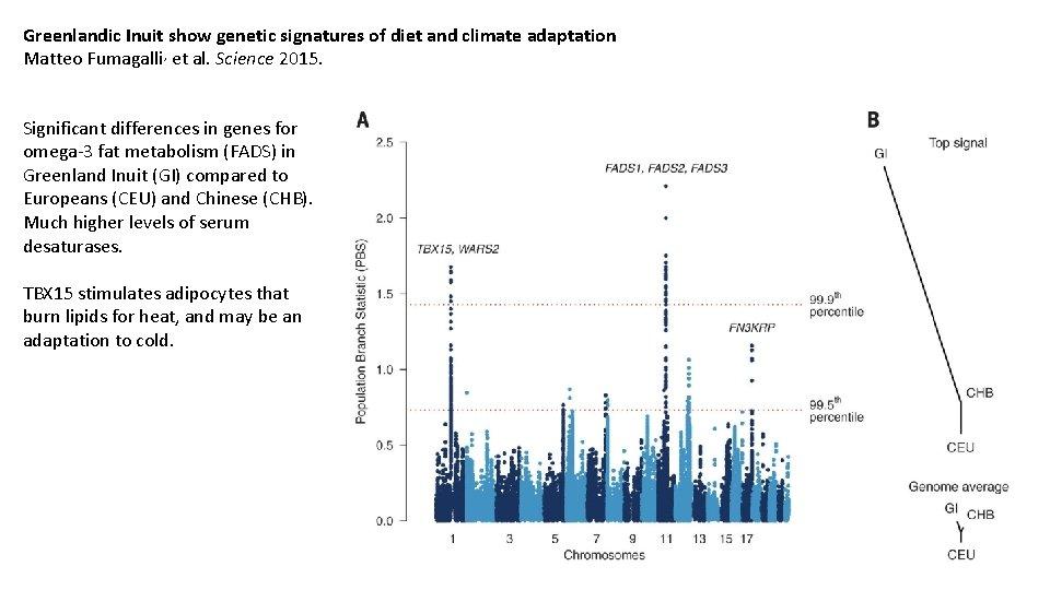 Greenlandic Inuit show genetic signatures of diet and climate adaptation Matteo Fumagalli, et al.