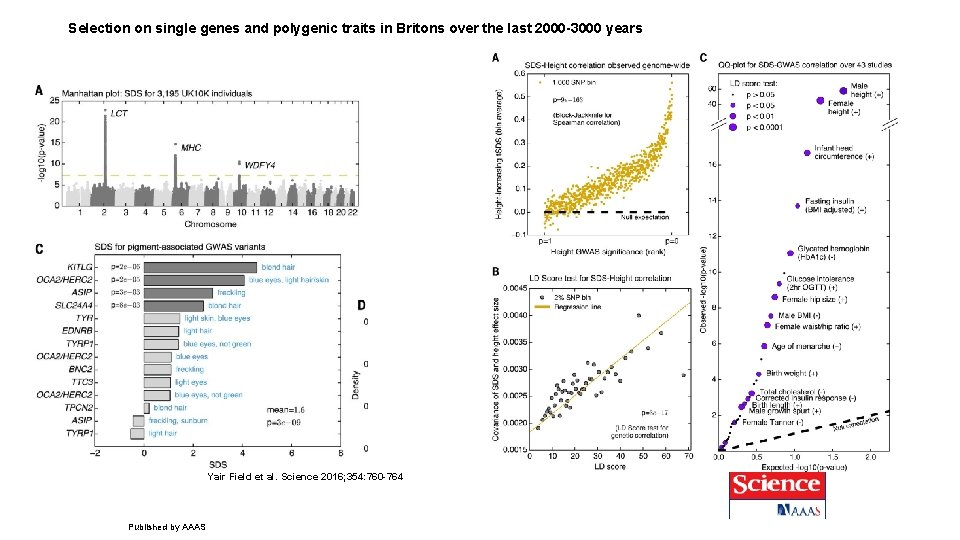 Selection on single genes and polygenic traits in Britons over the last 2000 -3000