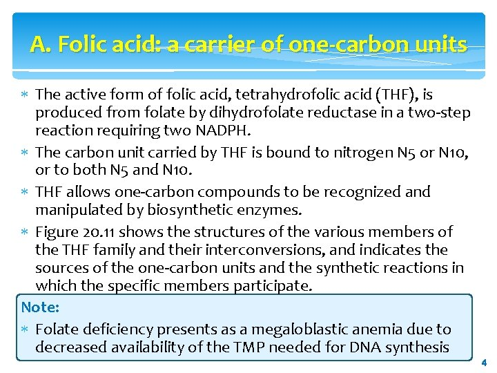 A. Folic acid: a carrier of one-carbon units The active form of folic acid,