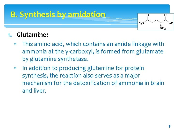 B. Synthesis by amidation 1. Glutamine: This amino acid, which contains an amide linkage