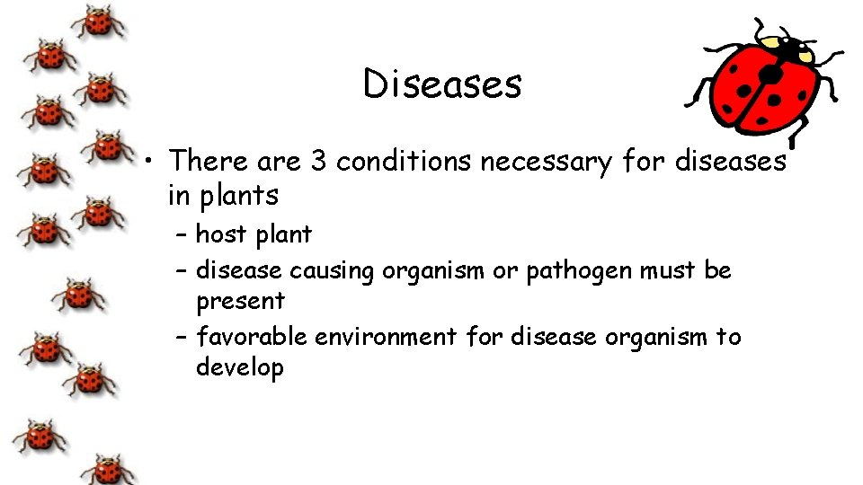 Diseases • There are 3 conditions necessary for diseases in plants – host plant