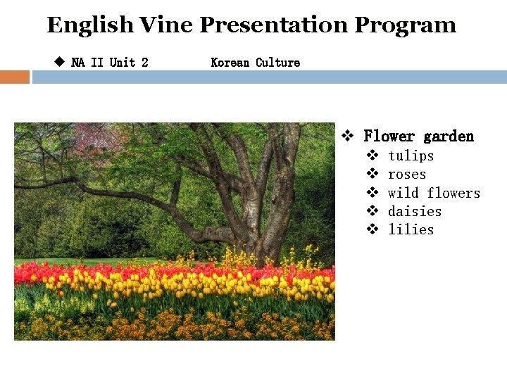 English Vine Presentation Program u NA II Unit 2 Korean Culture v Flower garden
