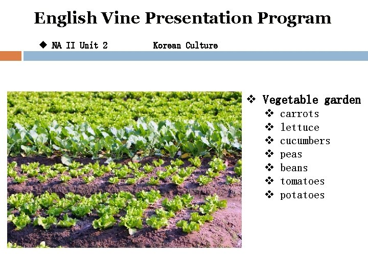 English Vine Presentation Program u NA II Unit 2 Korean Culture v Vegetable garden