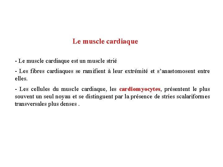 Le muscle cardiaque - Le muscle cardiaque est un muscle strié - Les fibres