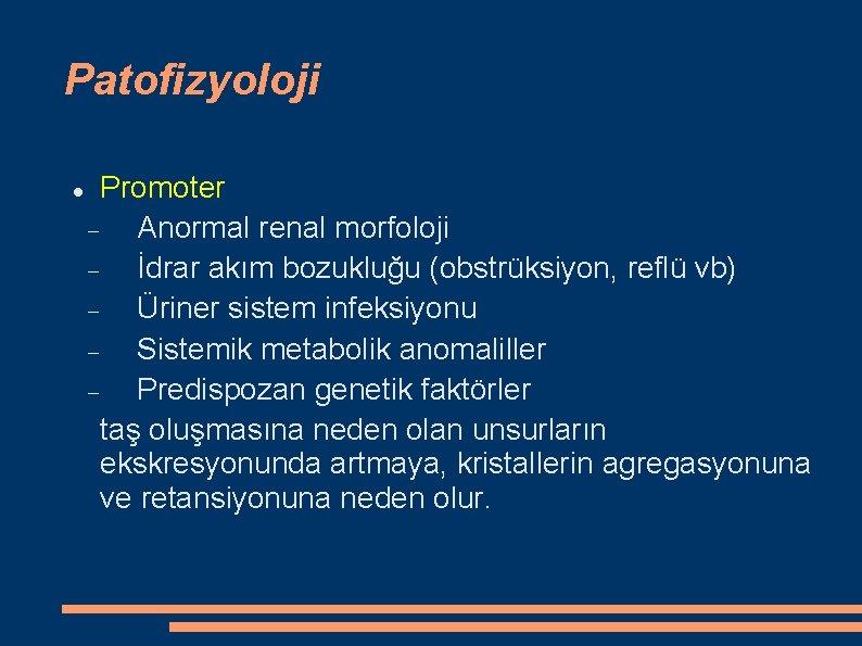 Patofizyoloji Promoter Anormal renal morfoloji İdrar akım bozukluğu (obstrüksiyon, reflü vb) Üriner sistem infeksiyonu