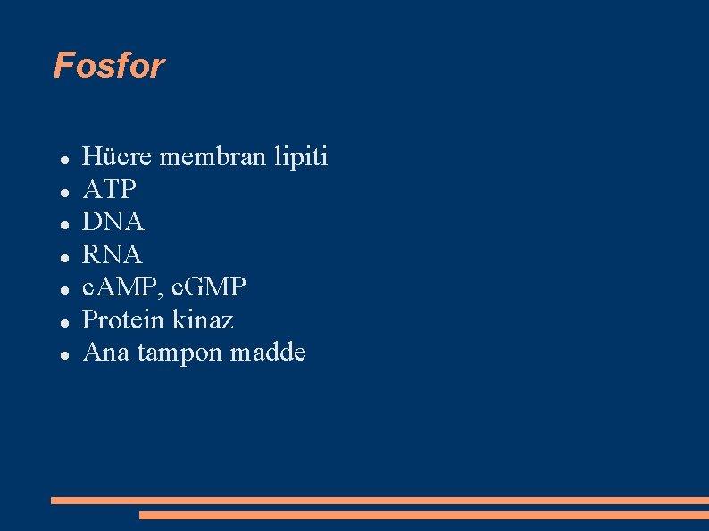 Fosfor Hücre membran lipiti ATP DNA RNA c. AMP, c. GMP Protein kinaz Ana