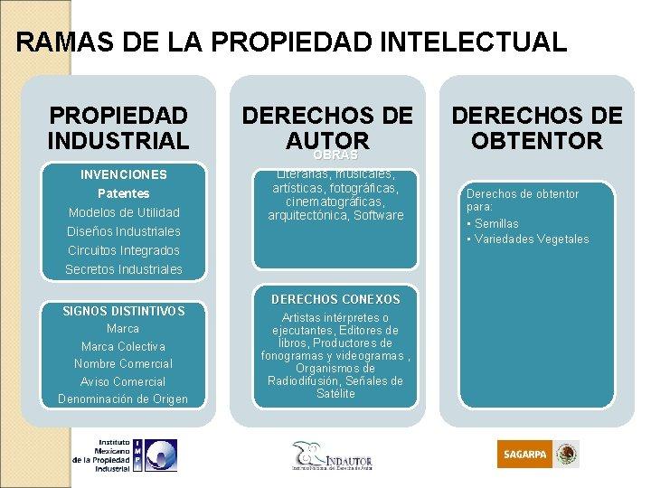 RAMAS DE LA PROPIEDAD INTELECTUAL PROPIEDAD INDUSTRIAL INVENCIONES Patentes Modelos de Utilidad Diseños Industriales