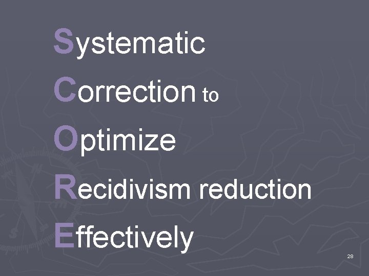 Systematic Correction to Optimize Recidivism reduction Effectively 28