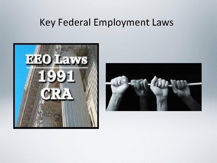Key Federal Employment Laws