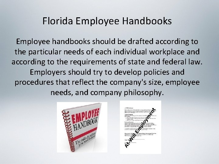 Florida Employee Handbooks Employee handbooks should be drafted according to the particular needs of