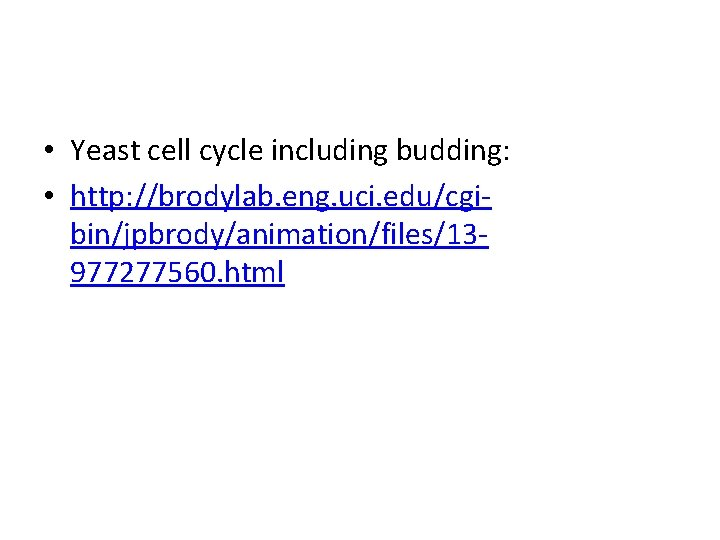 • Yeast cell cycle including budding: • http: //brodylab. eng. uci. edu/cgibin/jpbrody/animation/files/13977277560. html