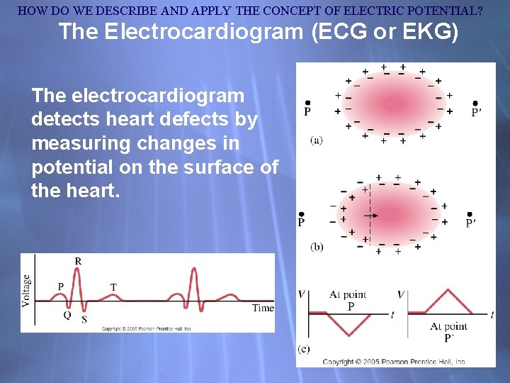 HOW DO WE DESCRIBE AND APPLY THE CONCEPT OF ELECTRIC POTENTIAL? The Electrocardiogram (ECG