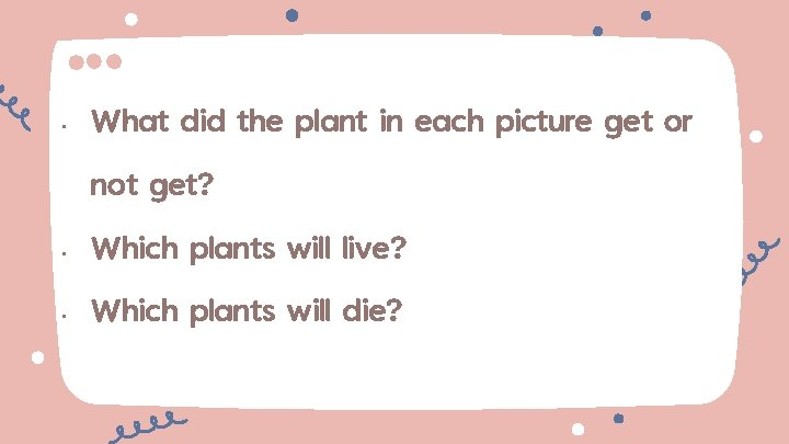 • What did the plant in each picture get or not get? •