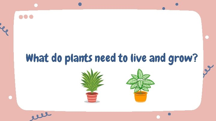What do plants need to live and grow?