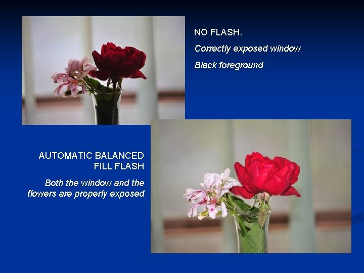 NO FLASH. Correctly exposed window Black foreground AUTOMATIC BALANCED FILL FLASH Both the window