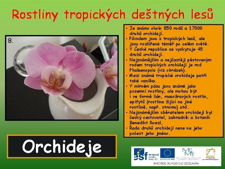 Rostliny tropických deštných lesů 8. Orchideje • Je známo okolo 850 rodů a 17000