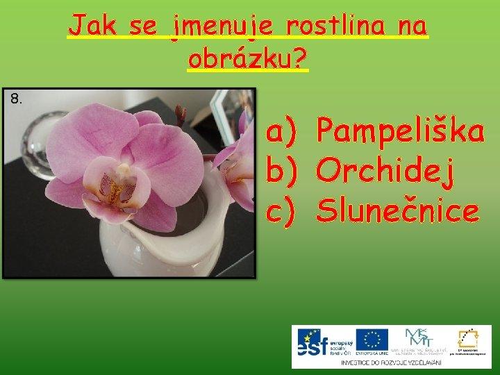 Jak se jmenuje rostlina na obrázku? 8. a) Pampeliška b) Orchidej c) Slunečnice