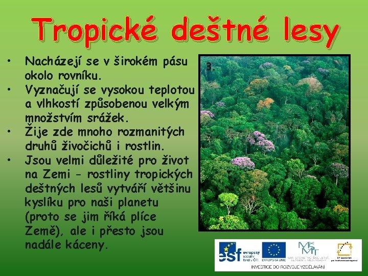 Tropické deštné lesy • • Nacházejí se v širokém pásu 3. okolo rovníku. Vyznačují