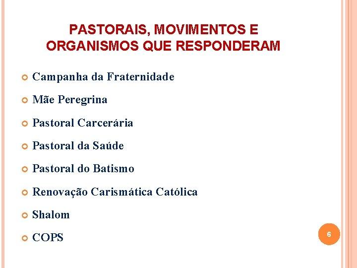 PASTORAIS, MOVIMENTOS E ORGANISMOS QUE RESPONDERAM Campanha da Fraternidade Mãe Peregrina Pastoral Carcerária Pastoral