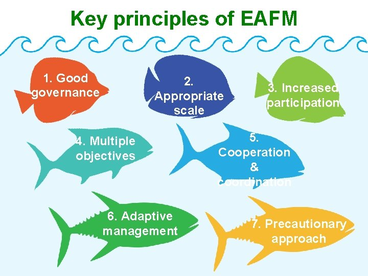 Key principles of EAFM 1. Good governance 2. Appropriate scale 4. Multiple objectives 6.
