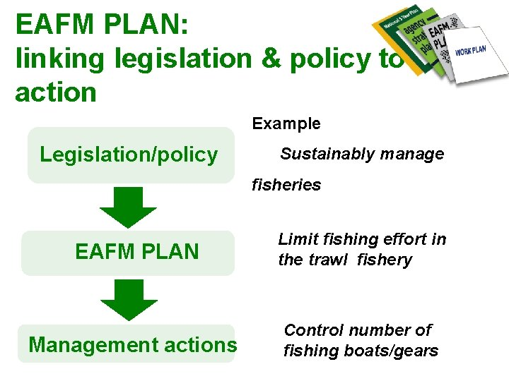 EAFM PLAN: linking legislation & policy to action Example Legislation/policy Sustainably manage fisheries EAFM