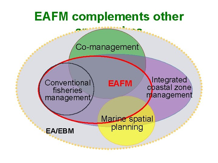 EAFM complements other approaches Co-management Conventional fisheries management EA/EBM EAFM Integrated coastal zone management