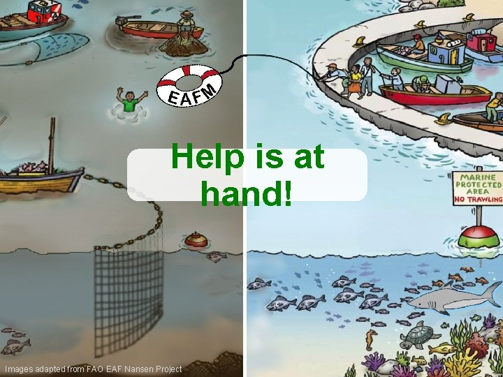 Help is at hand! Images adapted from FAO EAF Nansen Project