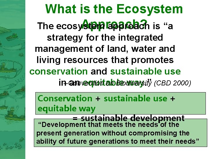 """What is the Ecosystem Approach? The ecosystem approach is """"a strategy for the integrated"""